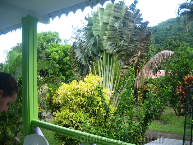 Nos 5 g tes en location en guadeloupe for Jardin tropical guadeloupe